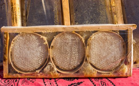 Sweet fresh honey in the sealed comb frame...