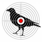 target shooting bird in a dash