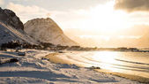 Sunset in a snow covered beach in Lofoten Island, Norway