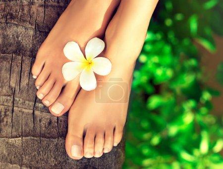 Photo pour Tannée pieds bien entretenues au milieu d'une mer turquoise tropicale. Pédicure et Spa pour les pieds. - image libre de droit