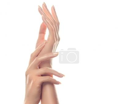 beautiful woman hands with  light manicure