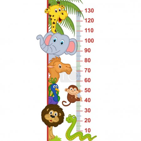 Illustration for Zoo animal height measure - vector illustration, eps - Royalty Free Image