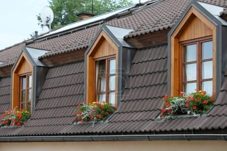 Roof Windows in the attic