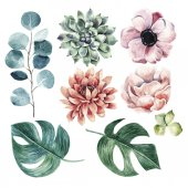 Big flower collectionWatercolor hand drawn illustration with plants