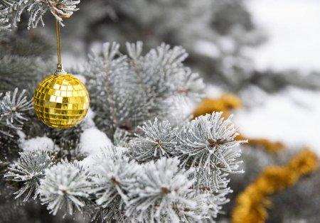 Photo pour Jouets du Nouvel An et tinsel sur une branche de pin, paysage naturel. - image libre de droit