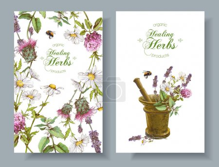 Illustration for Vector vertical wild flowers and herbs banners with mortar. Design for herbal tea, natural cosmetics, perfume, health care products, homeopathy, aromatherapy. With place for text - Royalty Free Image
