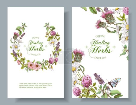 Illustration for Vector vertical wild flowers and herbs banners. Design for herbal tea, natural cosmetics, honey, perfume, health care products, homeopathy, aromatherapy. With place for text - Royalty Free Image
