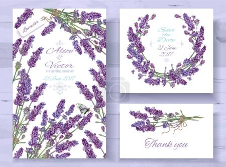 Illustration for Vector wedding invitations set with lavender flowers on white background. Romantic tender floral design for wedding invitation, save the date and thank you cards. With place for text - Royalty Free Image
