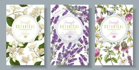 Illustration for Vector vertical wild flowers and herbs banners. Design for herbal tea, natural cosmetics, perfume, health care products, aromatherapy. With place for text. Can be used as wedding, summer background - Royalty Free Image