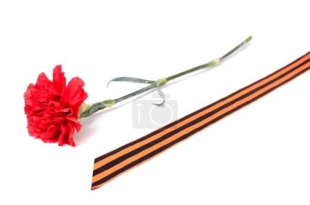 Red Carnation St. George ribbon on white background, symbol of the great Victory over the Nazis,