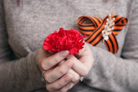 A girl holds a red carnation,