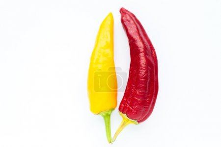 Different kinds of chilli peppers