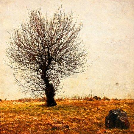 Photo pour Arbre solitaire dans ans fond texturé. Dépression et mélancolie de l'humeur. Abstrait solitude et la tristesse. Effet Shabby et vintage - image libre de droit