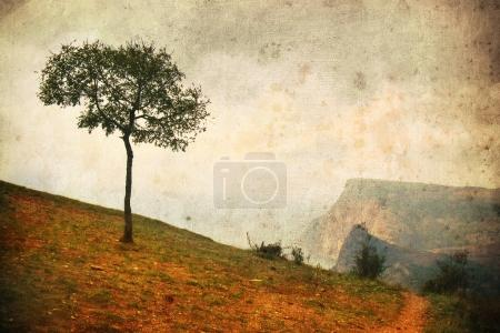 Photo for Lonely tree in aged textured  background. Depression and melancholy mood. Abstract loneliness and sadness. Shabby and vintage effect - Royalty Free Image