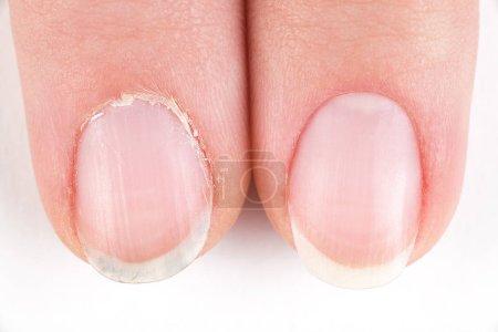 Photo pour Mains féminines avec manucure close-up - image libre de droit