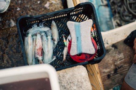 Photo pour Pêcheur professionnel insulaire capturant.encre de calmar .appât de poisson.pêche vivante.marché local du poisson.fruits de mer.régime méditerranéen sain.pêche durable .élevage - image libre de droit