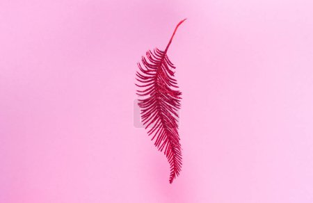 Photo pour Plume rouge sur fond rose. Nouvel An, Noël et concept d'anniversaire. Espace vide pour le texte - image libre de droit