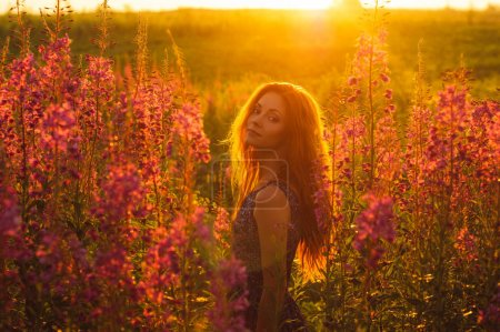 Beautiful girl on field, sun backlight,  sunrise