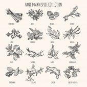 Herbs seasonings and seeds ingredients