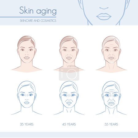 Skin aging stages on female faces