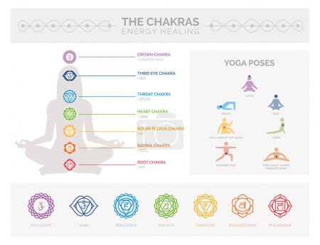 Illustration for Chakras, energy healing and yoga infographic: meditation and spirituality concept - Royalty Free Image