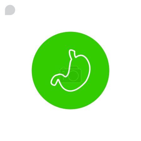 human stomach organ icon