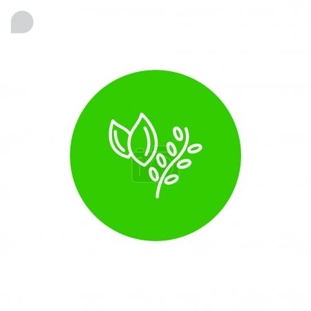 Herbs for cooking icon
