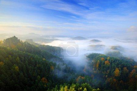 Photo pour Beau paysage coloré avec des collines et des arbres avec matin brumeux - image libre de droit