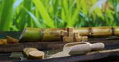 Egy makro lövés összetételének a cukornád, a kockacukrot és a cukor a nyers granulátum. Koncepció: édesítőszer, természet, energia, gyümölcslevek és italok