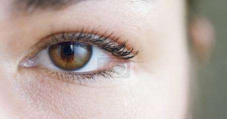 perfect woman brown eye macro in a sterile environment