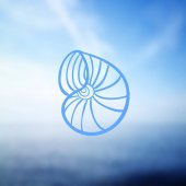 Seashell on sea background Vector illustration Beach concept for restaurant menu card ticket branding logo label Black and white