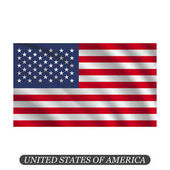 Waving USA flag on a white background Vector illustration