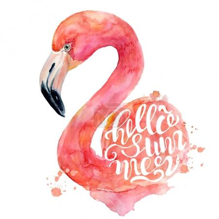 Photo for Watercolor pink flamingo hand painted illustration isolated on the white background with inscription lettering Hello Summer. Tropical bird - Royalty Free Image