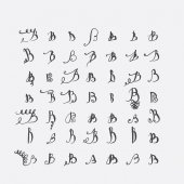 Vector set of calligraphic letters B handwritten with pointed nib decorated with flourishes and decorative elements Isolated on grey black imperfect letters sequence Various shapes collection