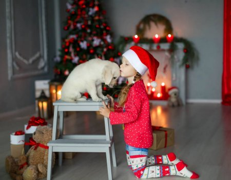 Photo for The girl received a Christmas gift in the form of a little labrador puppy. - Royalty Free Image