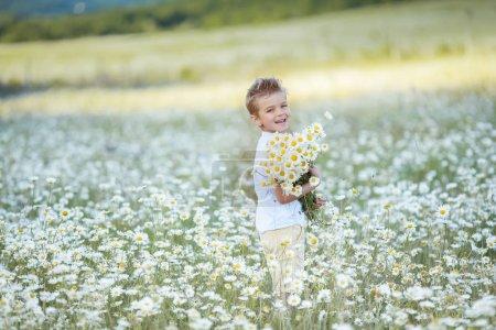 Photo pour Joyeux garçon joyeux recueille un bouquet de marguerites de fleurs dans un champ blanc . - image libre de droit