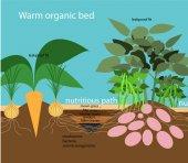 organic farming warm organic bedVector flat illustrationinfog