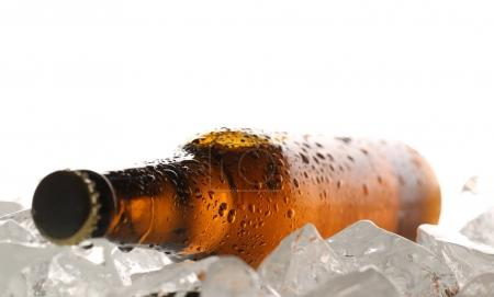 Photo for Beer with drops on ice, Oktoberfest beer, alcoholic drinks, cold drink, ice cubes, pub and bar, food and drinks, refreshing drink, close up, white background - Royalty Free Image