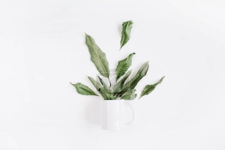 Photo for Blank template of white mug and green leaves bouquet on white background. Flat lay, top view. - Royalty Free Image