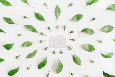 Photo for Frame wreath of green leaves on white background, Flat lay, top view. Flower background. - Royalty Free Image