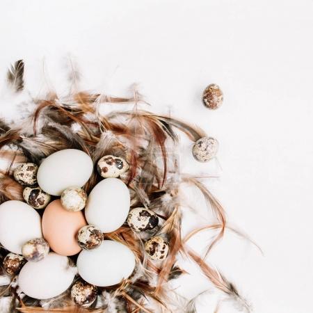 White, brown Easter eggs, quail eggs in nest