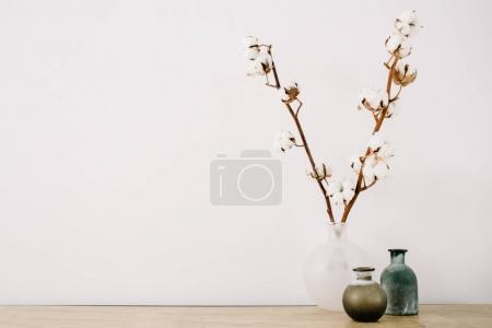 cotton branches and beauty stylish vase
