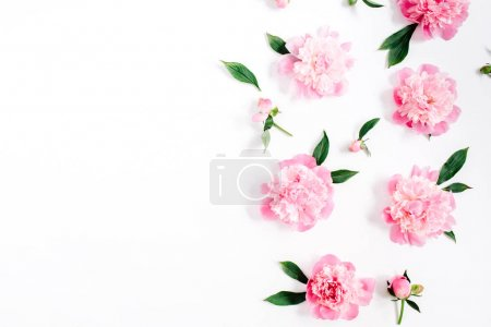 Floral pattern of pink peony flowers