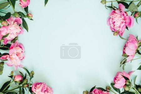 Photo pour Guirlande de cadre de fleurs de pivoine rose, les branches, les feuilles et les pétales avec un espace pour le texte sur fond bleu. Vue plate Lapointe, haut. Texture fleur pivoine. - image libre de droit