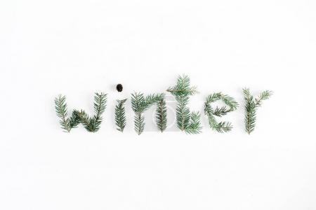 Word Winter made of fir branches