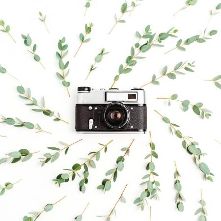 Photo for Flat lay, top view minimal composition with retro photo camera in frame of eucalyptus branch on white background. Freelance photographer concept. - Royalty Free Image