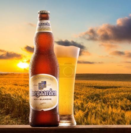Hoegaarden wheat Belgian beer
