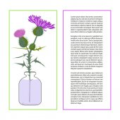 Card with Thistle Flower bud with accurate details in flat style isolated on a white background Wildflower in glass jar Place for text Botany herbs Vector Illustration eps10