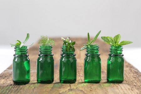Green Bottle of essential oil with Fresh herbs and medicinal plants