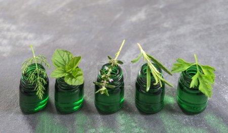 Photo pour Bouteille verte d'huile essentielle aux herbes fraîches et aux plantes médicinales sur fond d'ardoise - image libre de droit